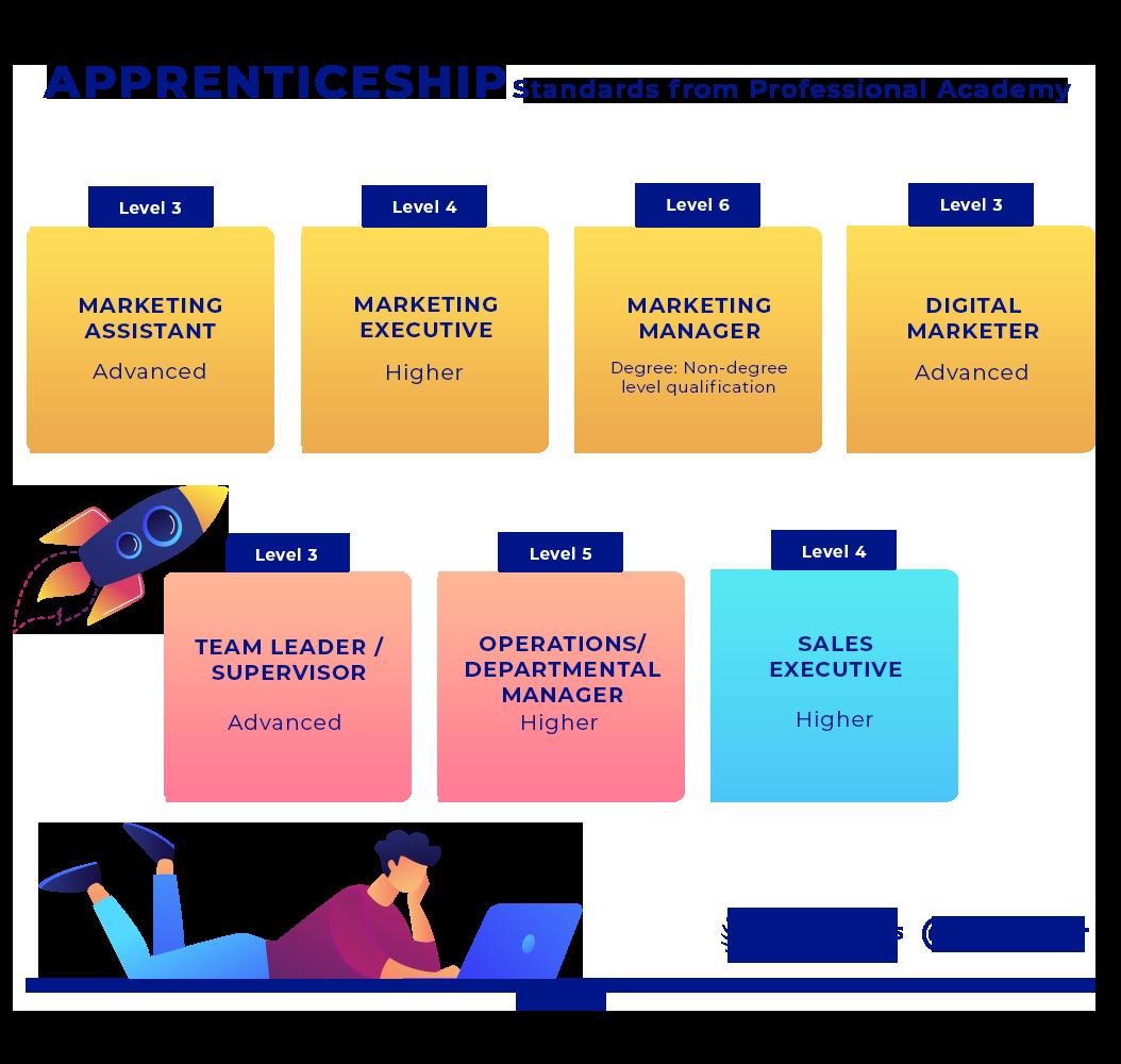 Professional Academy apprenticeship standards
