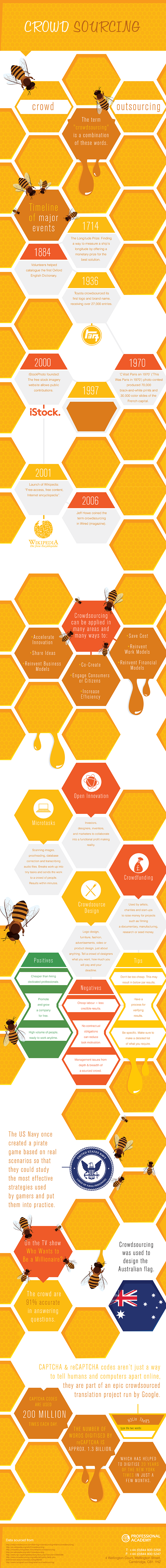 Crowd sourcing infographic