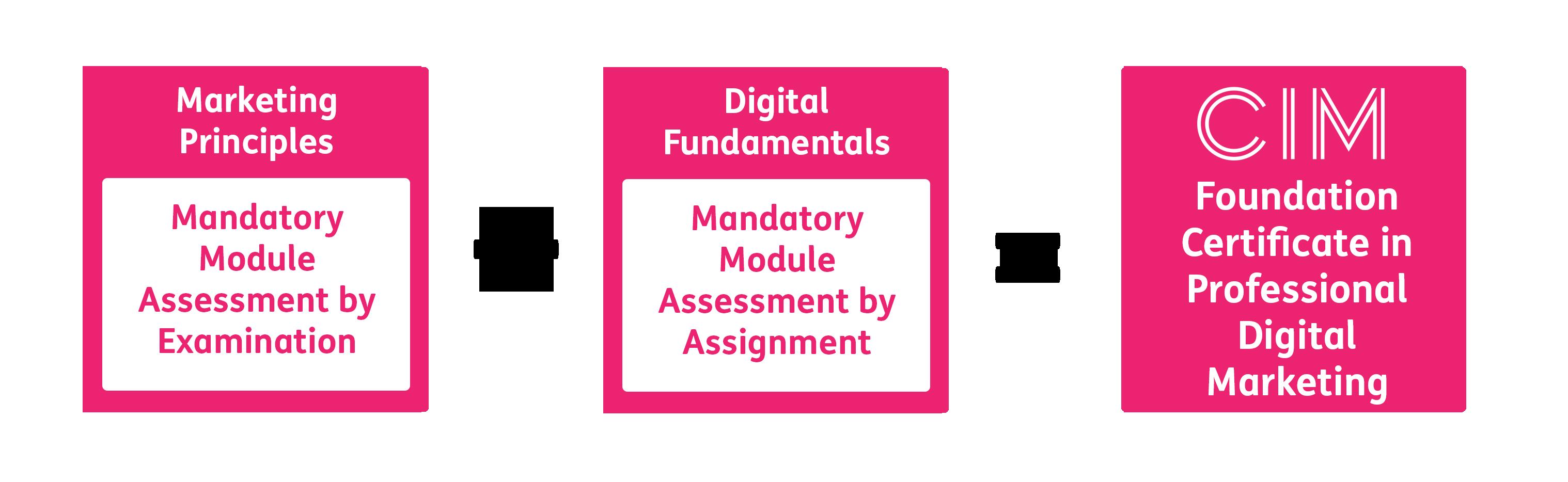 CIM Foundation Certificate in Professional Digital Marketing Structure