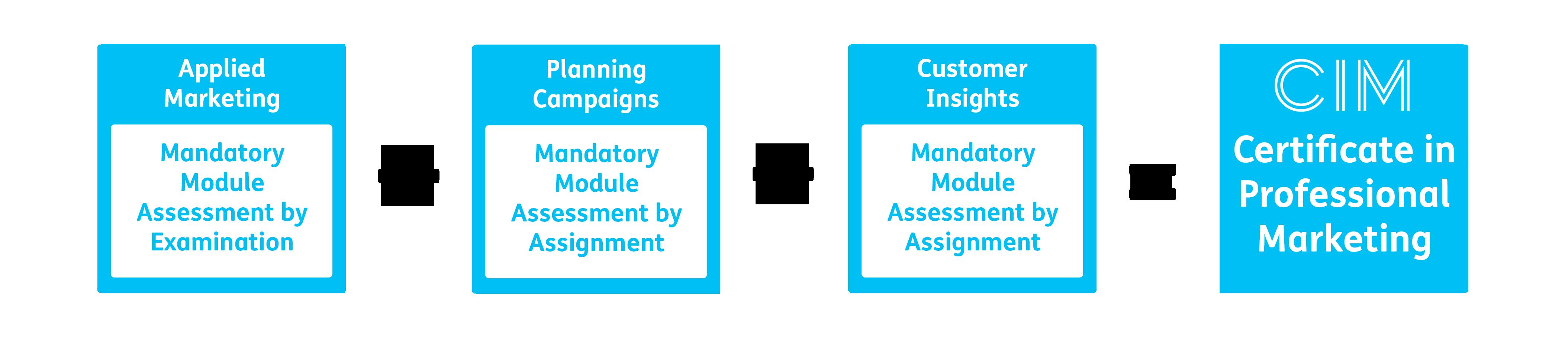 CIM Level 4 Certificate in Professional Marketing Structure