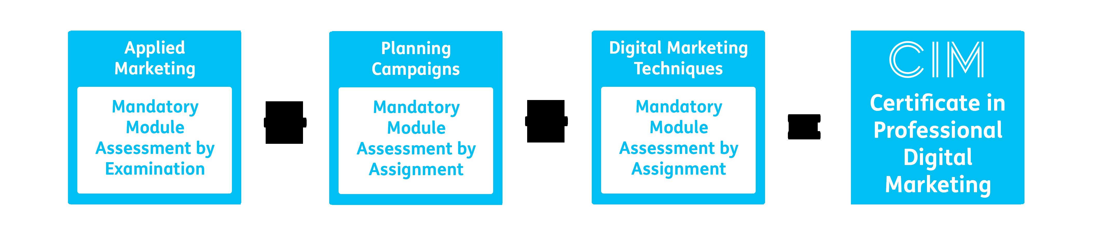 CIM Certificate in Professional Digital Marketing Structure