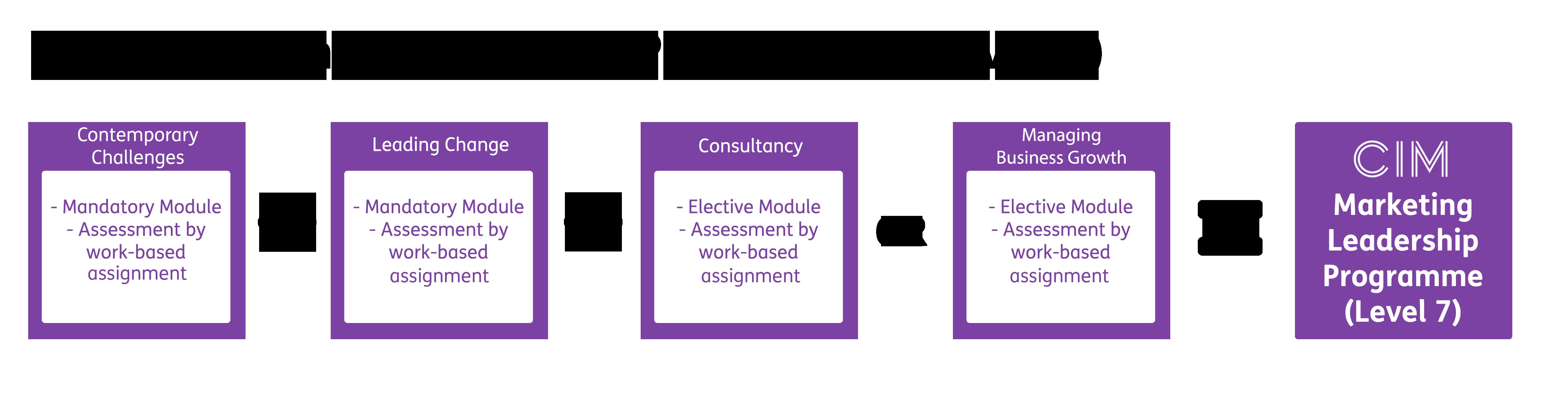 CIM Marketing Leadership Programme Qualification Structure
